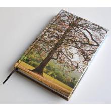 Красочные Печать Жесткий Чехол Ноутбука