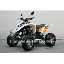 Aprovação de atv moto/EEC de quadriláteros de 300cc