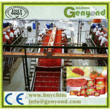 Ketchup de tomate automática que faz a máquina