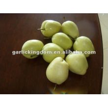 2012 New Crop Su Pear