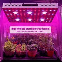 Plante d'intérieur COB Grow Light 3000W
