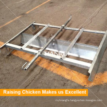 Farming port Automatic Chicken Manure Removing System for Poultry Equipment