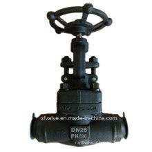 Válvula de globo forjada de alta pressão do aço carbono A105 do RUÍDO