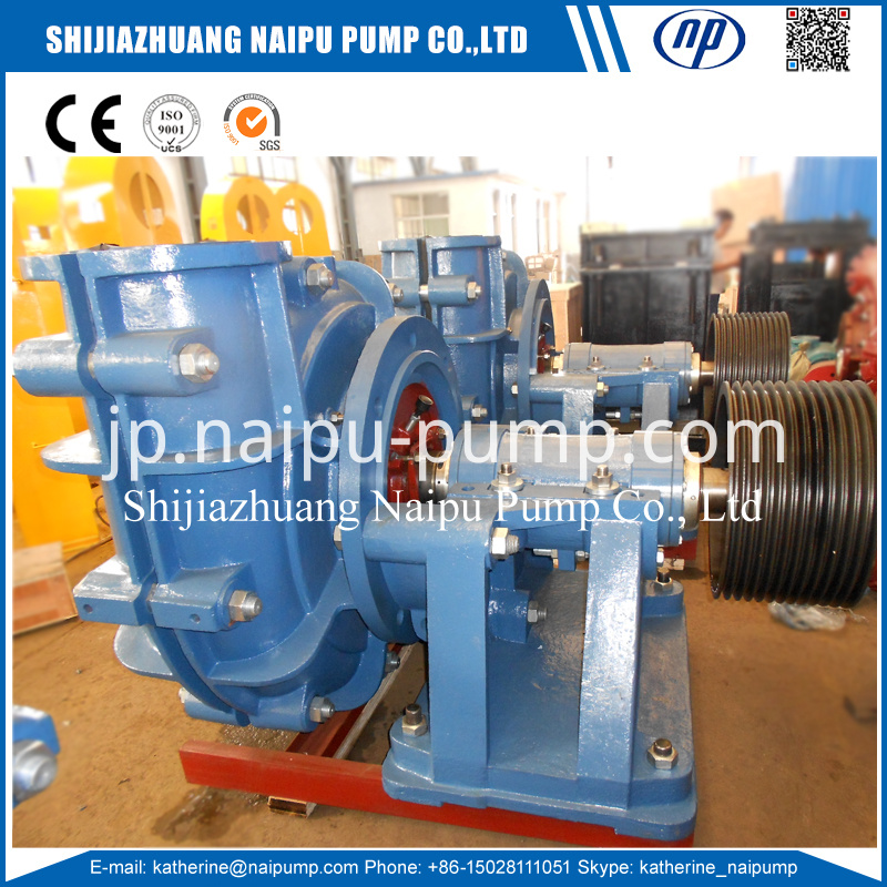 S21 Rubber Slurry Pump