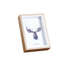 Wholesale custom Wood Deep Square Shadow Box Frames bulk 3d white black photo picture frames 6X6 ,12X12,8X10,11x14