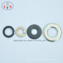 Various Kinds of Washers/Plain Wahser/Spring Washer