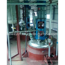 Fj High Efficent Factory Price Pharmaceutical Hydrothermal Synthesis Agitated Hydrogenation Quartz Reactor