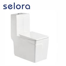 toilette monobloc amazon home depot chez costco