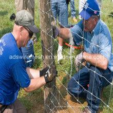 Farm Fenceing & Field Fence