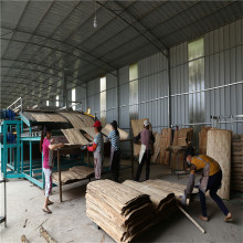 Wood Equipment for Roller Veneer Dryer