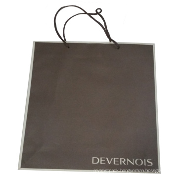 Color Printed Paper Gift Shopping Bag (SW396)