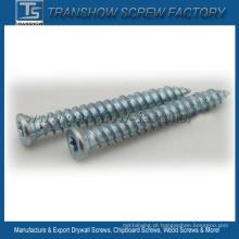 Parafusos concretos galvanizados zinco brancos azuis