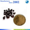 Extrait de pépins de tamarin pur nature de haute qualité, poudre de graines de tamarin, extrait de tamarin