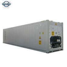 Tianjin LYJN usine prix chambre froide 40ft conteneur frigorifique