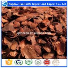 Coquille de cacao Cocoa Shell de haute qualité avec un prix raisonnable et une livraison rapide sur la vente chaude !!