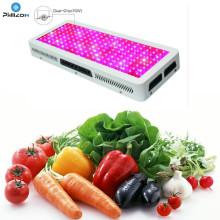 Le plus récent design COB LED élèvent la lumière