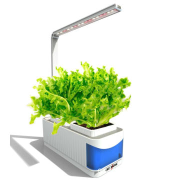Sistema de cultivo hidropónico colorido 10W Led Smart Garden Plant Grow Light