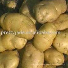 2014 precio bajo China patata fresca exportador