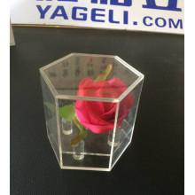 Heißer Verkauf Kristallhexagonaler Acrylblumenkasten für Geschenk