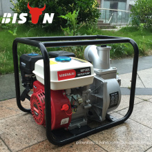 BISON(CHINA)Easy Start Honda Gasoline Engine Water Pump For Water