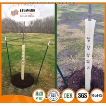 Protecteurs d'arbres extérieurs / abris d'arbres de plantes