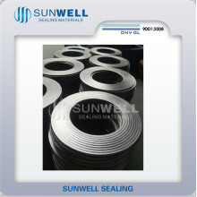 Cmg Corrugated Graphite Gaskets (SUNWELL)