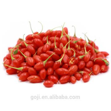 Gros séché sauvage Goji Berry Ningxia en vrac
