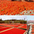 New Harvest Dried Natrual Goji Berry