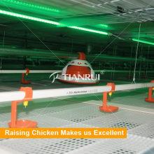 Сана автоматические Потаторы Ниппели Цыплятины для цыпленка