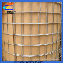 3/4*3/4′′ Hot DIP Galvanized Welded Wire Mesh (CT-4)