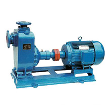 Electric Self Priming Clean Water Irrigation Pump