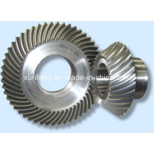 Hot Sale Bevel Gear for Stone Machinery