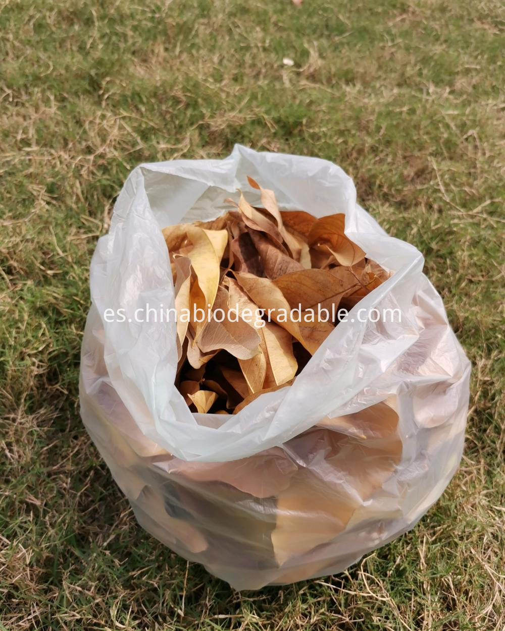 EN13432/BPI Certified Biodegradable Food Bin Bags