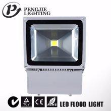 Projecteur LED Silver 100W pour extérieur avec CE (PJ1080)
