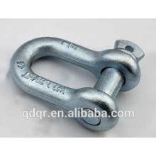 High Tensile Drop Forged Screw Pin D Shackle --Qingdao Rigging