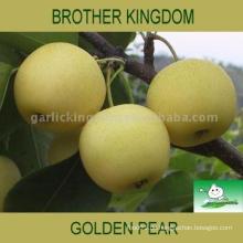 Verkaufe hochwertige Birne