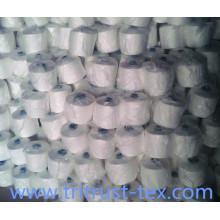 Spun Polyester Sewing Yarn (2/20s)
