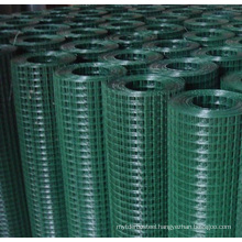 Free Sample Factory Price 1/2 Inch  welded wire mesh roll