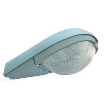 Luz de calle (DS-202)