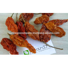 Oven Dried Ghost Chilli