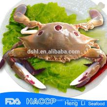 Gefrorene ganze Krabben Meeresfrüchte