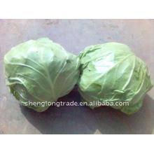 chines frische runde Kohlqualität