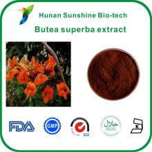 Hiqh qualité C29H50O Beta-Sitosterol Butea superba extrait