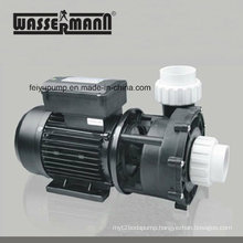 Circulation Pumps for Integrative Swimming Pool Filter System