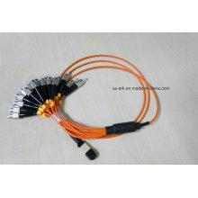 MPO / PC / Male) a FC / PC Om1 (62.5 / 125) Fibra óptica (1.5m)