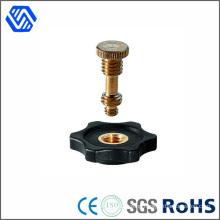 Furniture Hardware Copper Brass Bolt Manufacturer Customized Bolt Nut