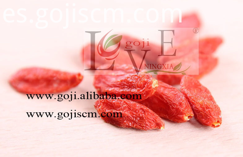 High Quality Natural Goji Berry