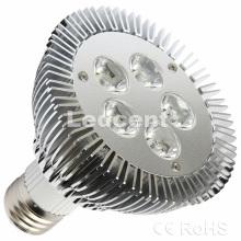 LED Spot Light (5W CE RoHS)