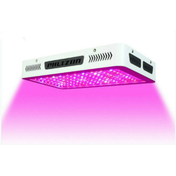 Planta LED Grow Light para cultivo hidropónico
