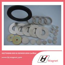 China fabricação de alta qualidade zinco anel forma ímã de NdFeB